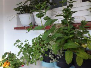 Kleinen Balkon gestalten