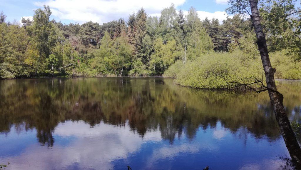 Wildpark Klövensteen