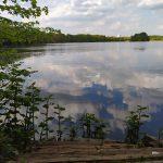 Öjendorfer See