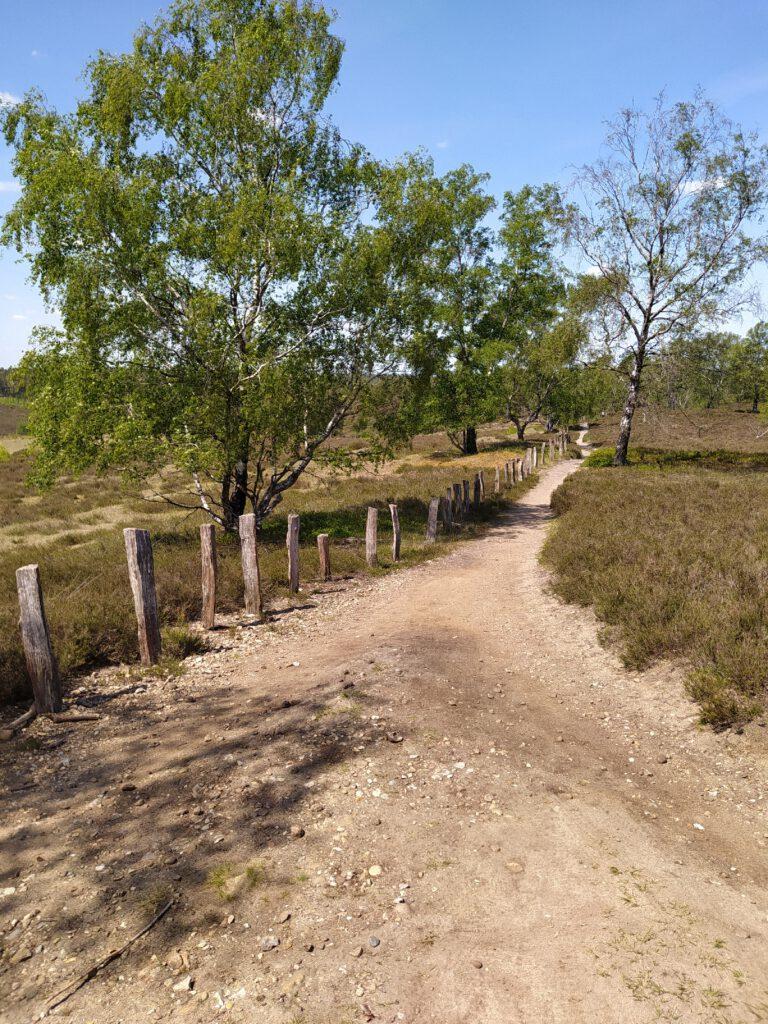 Harburger Berge und Fischbecker Heide