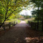 Sachsenwald Garten der Schmetterlinge Eisenbahnmuseum