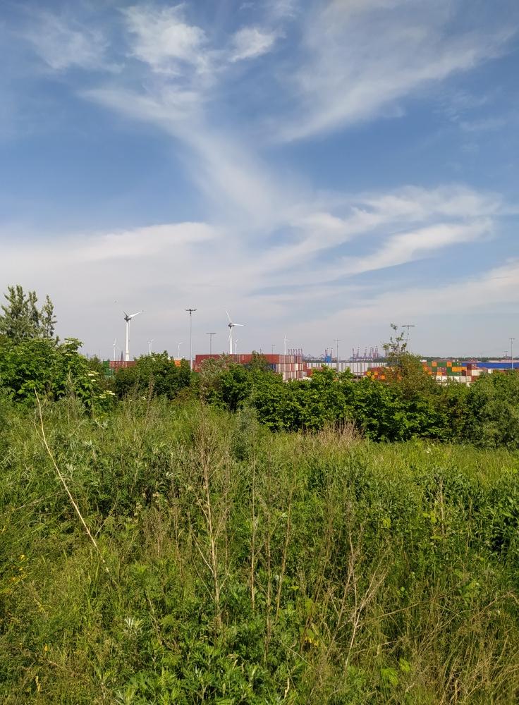 Altenwerder Hafenerlebnistour